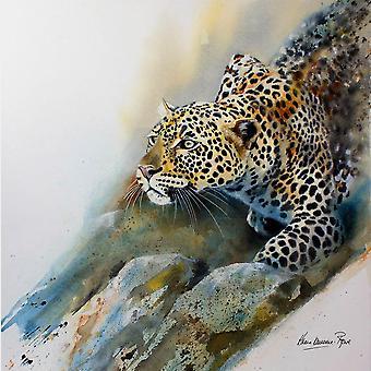 Frågor som landet tryckt drycker glasunderlägg - Stalking Leopard