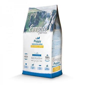Evoque Puppy Medium/Large Pollo Pavo y Arroz (Dogs , Dog Food , Dry Food)
