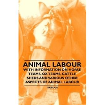 Animal Labour  With Information on Horse Teams Ox Teams Cattle Sheds and Various Other Aspects of Animal Labour by Authors & Various