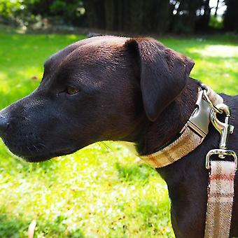 Dog Collar - Arncliffe Moonstone