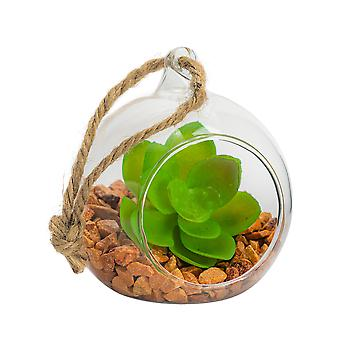 Nicola Spring Glass Plant Terrarium Set for Succulent Plants Ferns Cactus - Tabletop or Hanging Display - 80mm