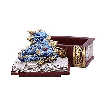Bedtime Stories (Blue) Dragon Box