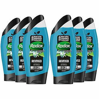 Radox Men 2in1 Gel douche & Shampooing, Feel Revived, 6 Pack - 250ml