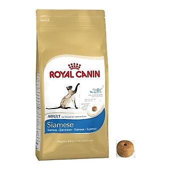 Royal Canin Siamese Cat Adult Dry Cat Food Balanced and Complete Cat Food 4KG