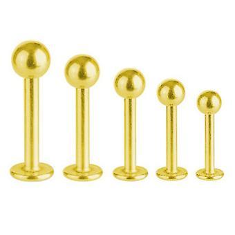 Labret Bar Tragus Monroe Piercing guld pläterad Titanium 1,6 mm med bollen | 5 - 16 mm