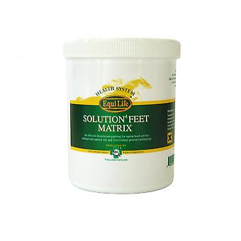 Equi-Life Solution4 Feet Matrix Disinfectant Packing