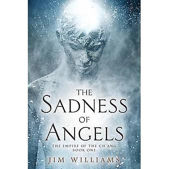 The Sadness of Angels by Williams & Jim