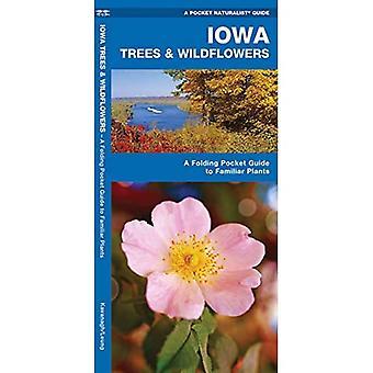 Iowa Trees & Wildflowers: An Introduction to Familiar Species