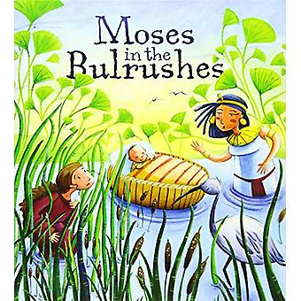 Moses in the Bulrushes by Katherine Sully - 9781788930901 Book
