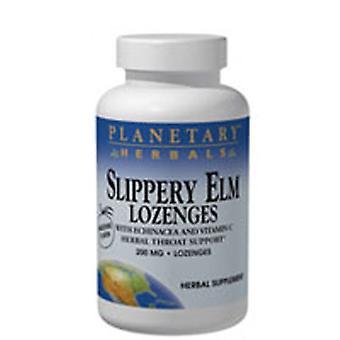 Planetary Herbals Slippery Elm Lozenge, Strawberry Flavor 100 lozenge