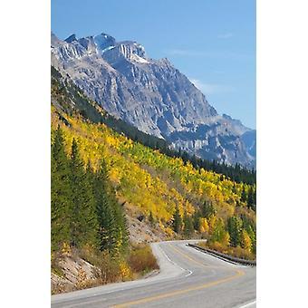 Kanada Alberta Jasper NP Scenic Icefields Parkway Poster Print von Jaynes Galerie