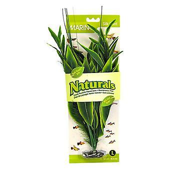"""Marina Silk Dracena Akvarijní rostlina - zelená - velká (12"""" vysoká)"""