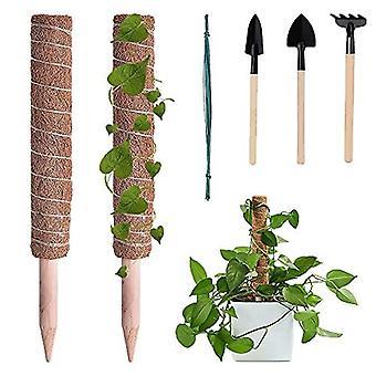 Eos 2 Pcs 20 بوصة / 50 سم Coir Totem Moss Pole لنباتات مونسترا والجبن - كوكو كير Sticks for Indoor Climbing Plants الدعم مع 10 كابل Ti