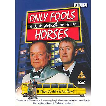 Vain Fools ja hevoset (TV) elokuvajuliste (11 x 17)