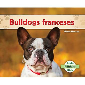 Bulldogs Franceses (French Bulldogs ) (Perros (Dogs Set 2))