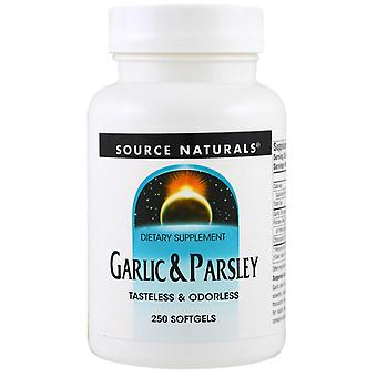 Source Naturals, Garlic & Parsley, 250 Softgels