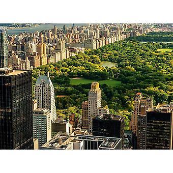Wallpaper muurschildering Central Park Manhattan