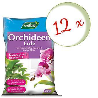 Sparset: 12 x WESTLAND® orkideamaa, 4 litraa