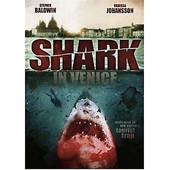 Hai in Venedig DVD