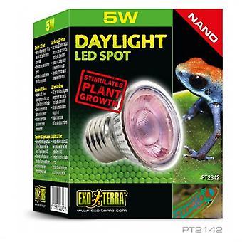 Exo Terra Daylight LED Spot NANO, 5W (Reptiles , Calefacción , Lámparas y bombillas)