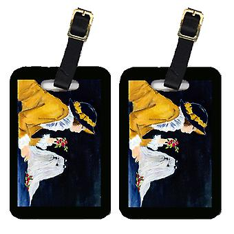 Carolines Treasures  SS8537BT Lady with her Maltese Luggage Tags Pair of 2