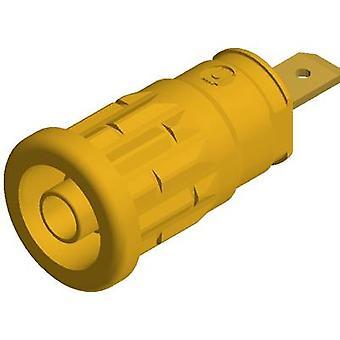 SKS Hirschmann SEP 2610 F4, 8 bezpieczeństwa jack gniazdo Socket, pionowe pionowe średnica sworznia: 4 mm żółty 1 szt.