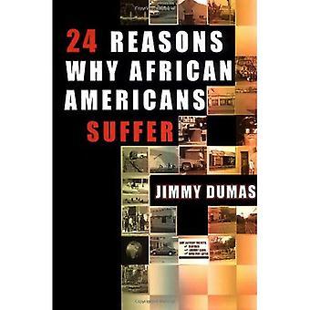 24 grunner Hvorfor afrikanske amerikanere lider