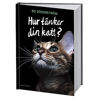 How does your cat think? 9789178870066