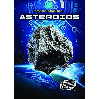 Asteroids by Betsy Rathburn - 9781626178571 Book