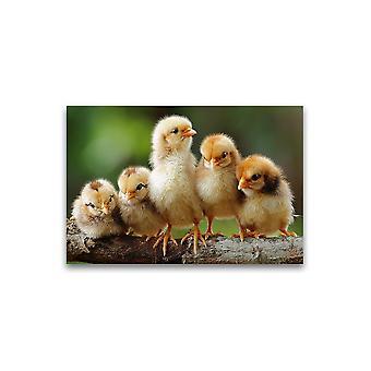 Schattige Broer of zus Chicks Poster -Afbeelding door Shutterstock