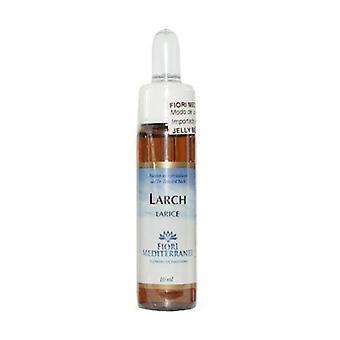 FM Larch (Larch) 10 ml of floral elixir