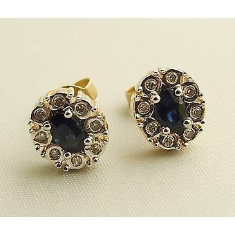 Bicolor gouden oorbellen met diamant en saffier