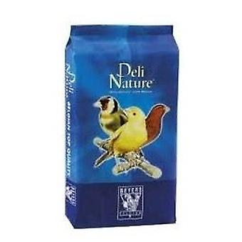 Beyers Deli Nature Canarios Basico (Birds , Bird Food)
