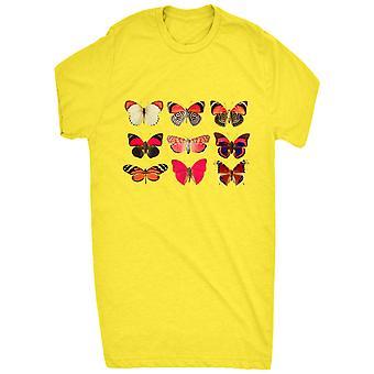 Berømte assorterede sommerfugl samling 1