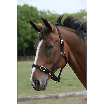 Roma Headcollar & Lead Set - Black