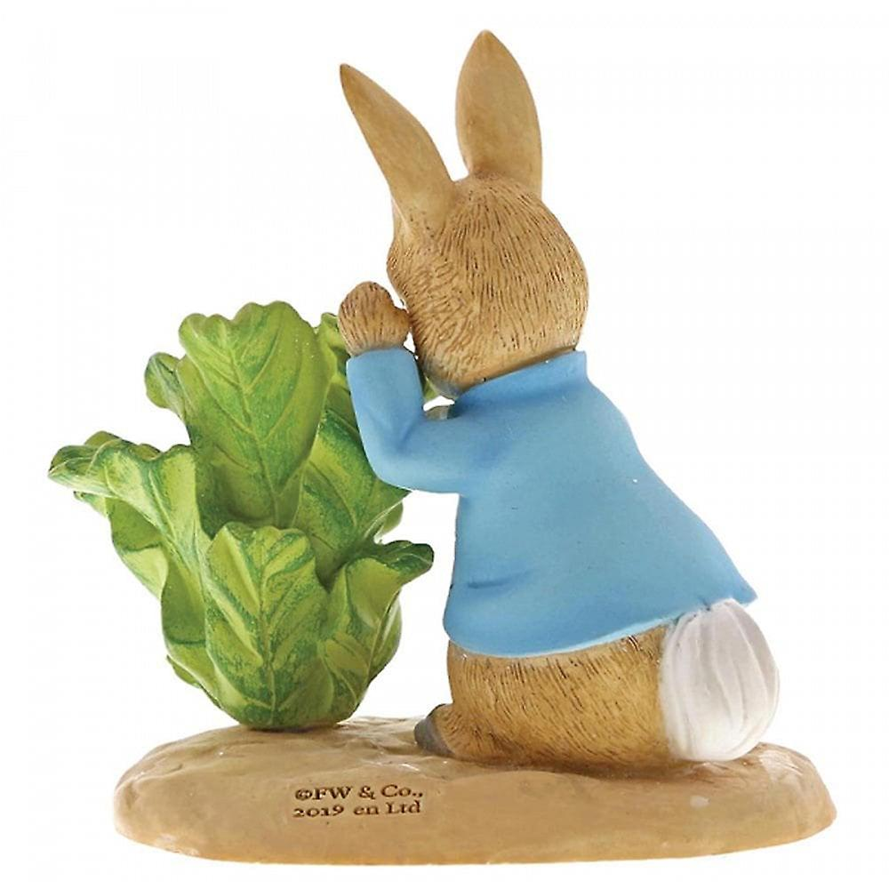 Beatrix Potter Peter Rabbit With Lettuce Figurine