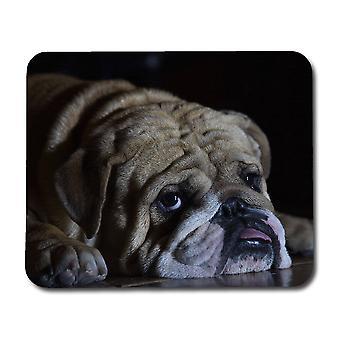 Englanti Bulldog Hiirimatto