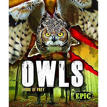 Owls by Nathan Sommer - 9781626178816 Book