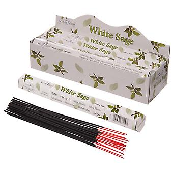100 White Sage Incense Sticks 20 Sticks Per Box Pagan Smudge For Cleansing Spaces Rooms and Cerimonies