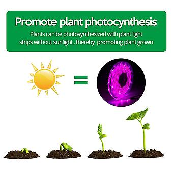 Led Grow Light Full Spectrum 5v Usb Grow Light Strip 2835 Led Phyto Lamps