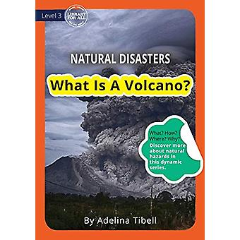 What Is A Volcano? by Adelina Tibell - 9781925960310 Book