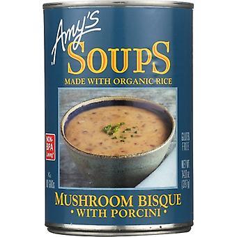 Amys Soup Mshrm Bisque Porci G, Case of 12 X 14 Oz