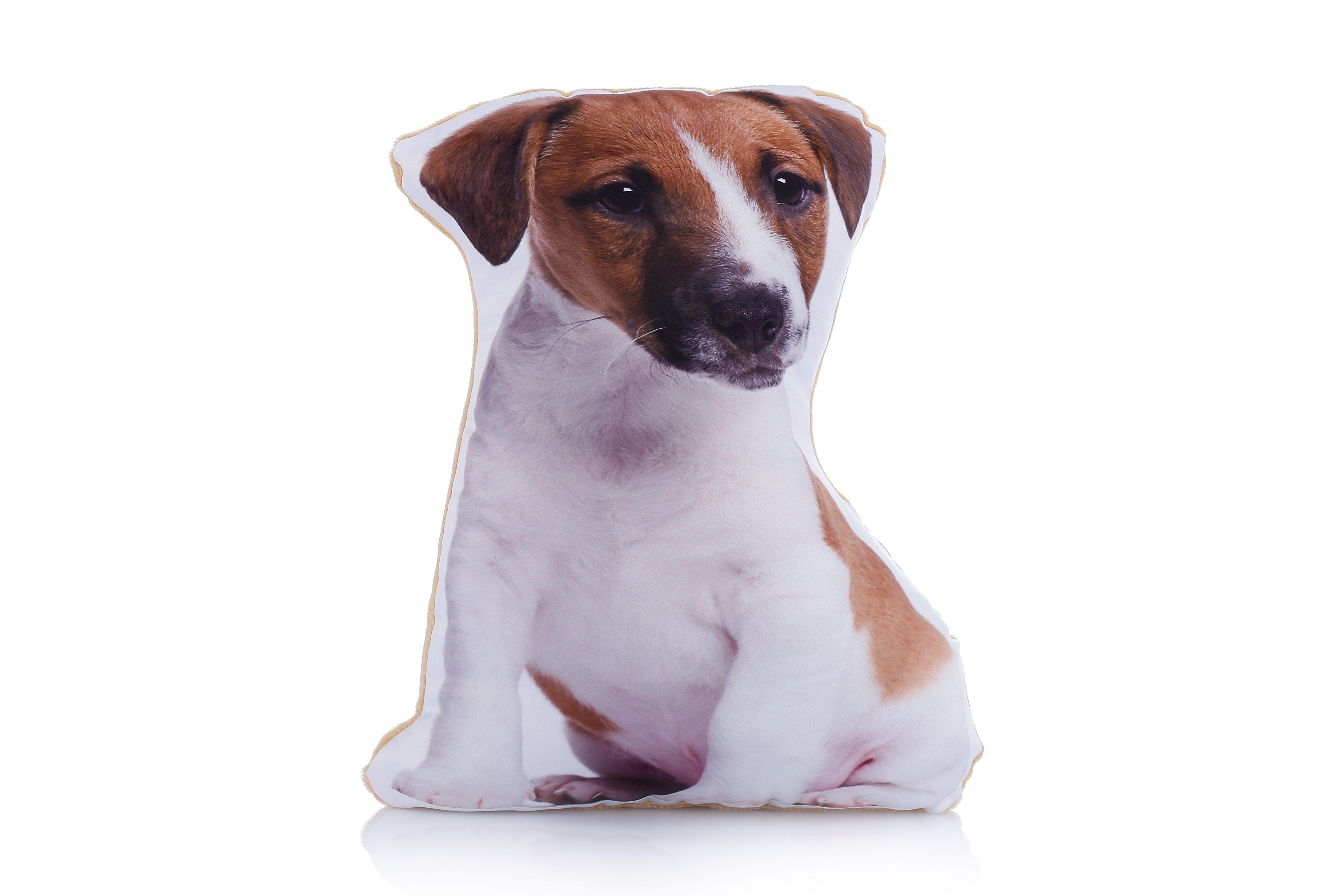 Adorable jack russell shaped midi cushion