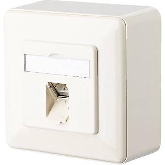 Metz Connect Network outlet Surface-mount CAT 6 1 port Oyster white