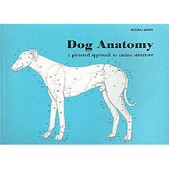 Dog Anatomy - A Pictorial Approach to Canine Structure by Peter C. Goo