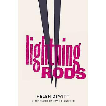 Lightning Rods by Helen Dewitt - 9781908276117 Book