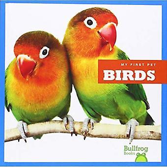 Oiseaux (mon premier animal de compagnie)