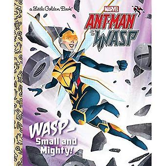 Wasp: Kleine en machtige! (Marvel Ant-Man en Wasp) (Gouden boekje)