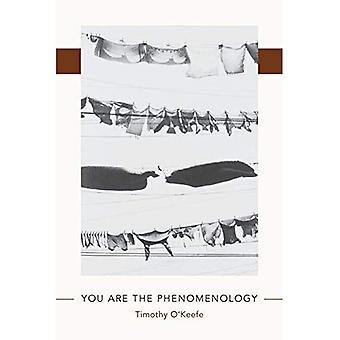 Vous êtes la phénoménologie (Juniper prix de poésie)