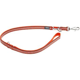 Red Dingo Reflective Belt Orange (Dogs , Collars, Leads and Harnesses , Leads)
